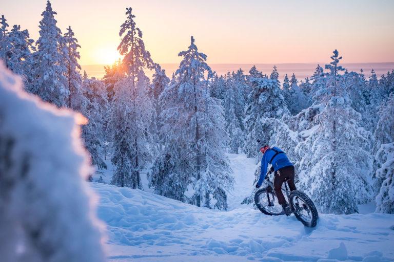 Mountain Bike Y Fat Bike En Laponia Gu 237 A De Turismo De